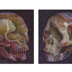Crystal skulls series