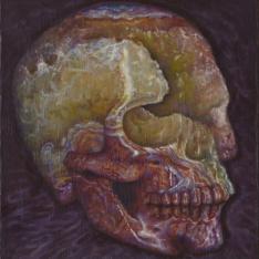 Crystal skulls series - (particolare sinistro)
